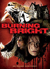 RECENZE: Burning Bright – tygr v baráku